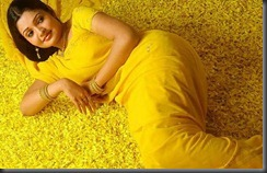 Vandana_Menon_in-yellow saree