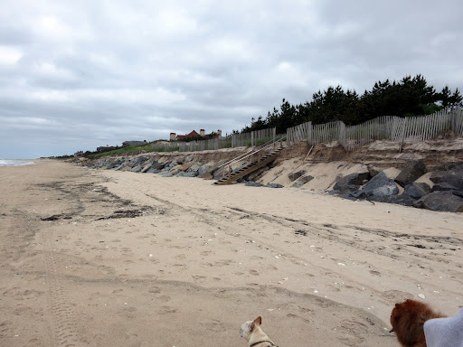 Some of the beaches may end up closing while the sand is replenished from other parts of the beach or dug up from the ocean floor.