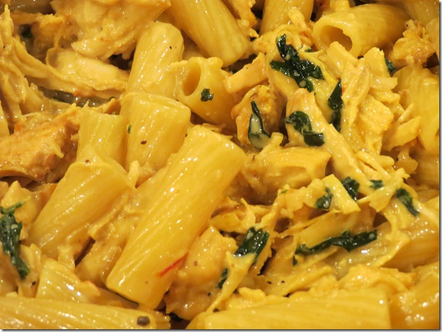 Rigatoni with Braised Chicken in a saffron cream