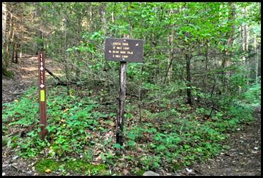 20d - Vogel SP - Bear Hair Trail left, Coosa Trail right
