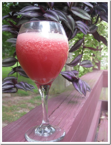 watermelon juice_tall glass