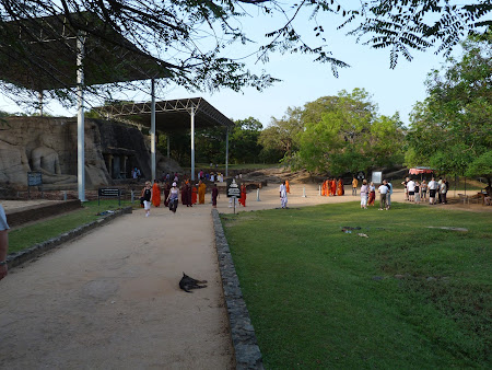 Atractii Sri Lanka: statuile gigantice ale lui Buda