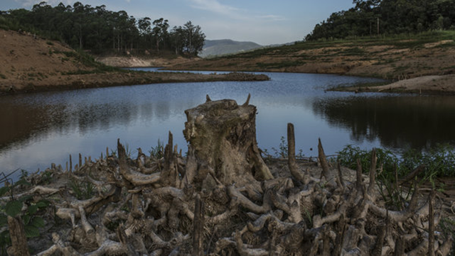 The dry banks of the Atibainha reservoir about 56 miles north of São Paulo, January 2015. Brazil is sometimes called the 'Saudi Arabia of water,' as if harnessing the coveted resource were a given comparable to living above a sea of oil. A more dystopian situation is unfolding however: water is in short supply. Photo: Mauricio Lima / The New York Times