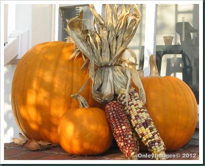 pumpkins-corn1