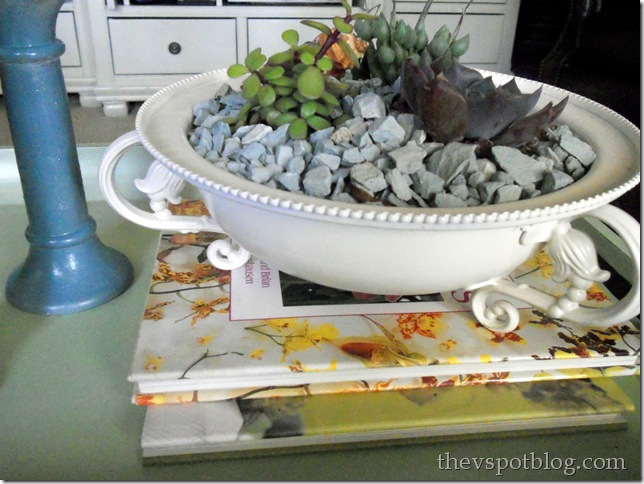 white, bowl, succulents, rocks