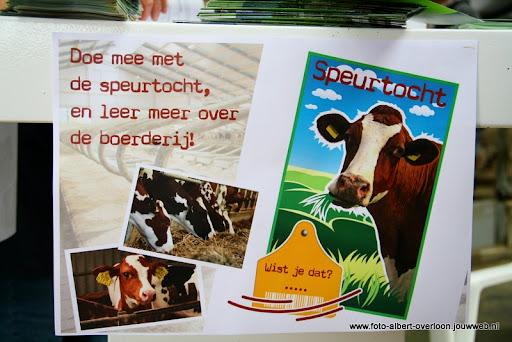 koeien kijken boer martij 18-06-2011 (31).JPG