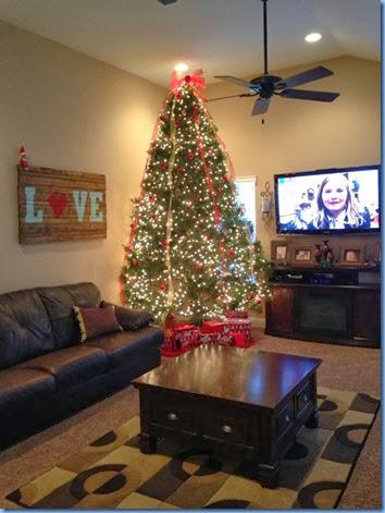 tree 2013 2