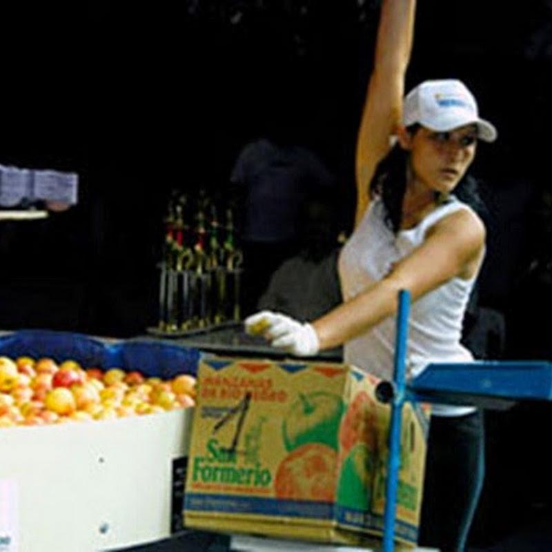 Colorido y alegría en la Fiesta Nacional de la Manzana.