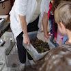 Óvodai rendezvények - 2012/2013-as tanév - Szőlőpréselés az oviban