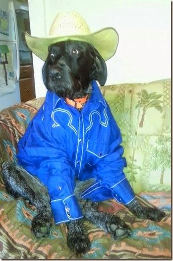 Lugarin his cowboyduds0992014a