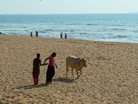 40. Plaja Goa.JPG