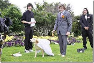 Pelik Giler! Lelaki Kahwin Dengan Anjing Di Australia