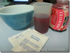 cranberry fruit gels - The Backyard Farmwife