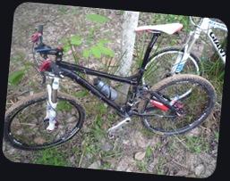 bike005