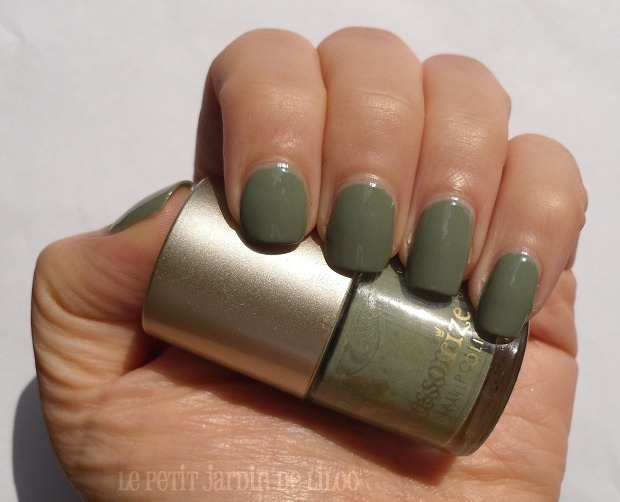 002-accessorize-nail-polish-wyoming-notd-review-swatch