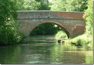 bridge with willow fluff