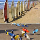 Surf...manif