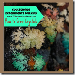 How to Grow Crystals 1st Grade Science
