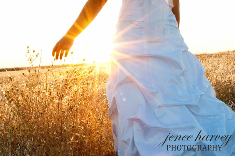 Lauren Trash the dress-5