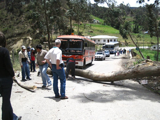Clearing a tree in the road on the way to Ingapirca