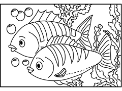 dois-peixes-para-colorir