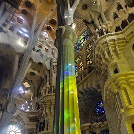 Sagrada Familia, Barcelona by Steve Griffiths - Buildings & Architecture Places of Worship ( church, column, light, worship, barcelona, colorful, mood factory, vibrant, happiness, January, moods, emotions, inspiration )