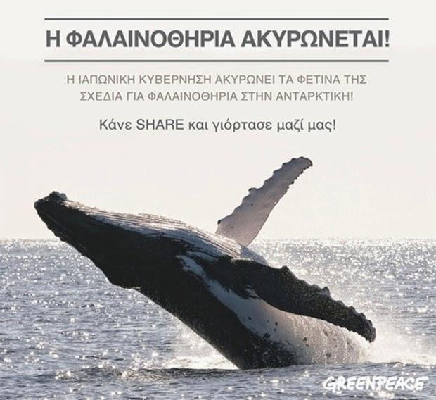 H φαλαινοθηρία ακυρώνεται στην Ανταρκτική!