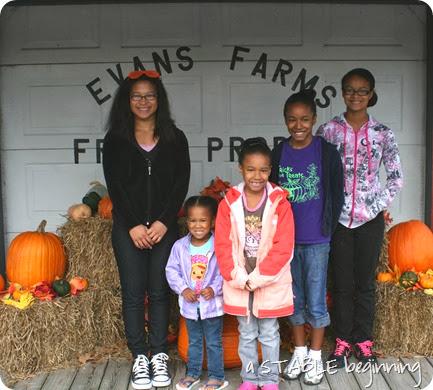 Pumpkins 021