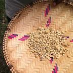 Rohkaffee nach dem Trocknen © Foto: Doreen Schütze | Outback Africa Erlebnisreisen