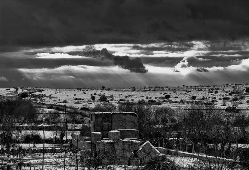 735 invierno en el campo