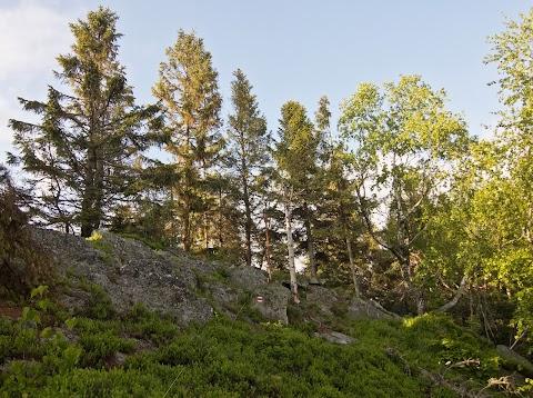 Zbojnicka skala, Volovské vrchy