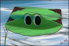 Pochette_Frog (018)