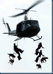 Tandum Parachuting in K9 Storm Vests