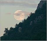 luna-llena-en-el-bosque-1223938119_full550