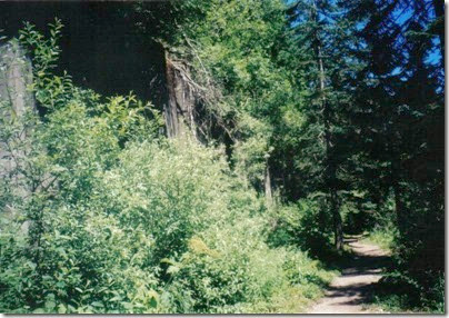 Concrete Snowshed Wall near Milepost 1712 on the Iron Goat Trail in 2000