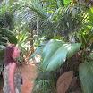 seychelles3_20070412_1520225617.jpg