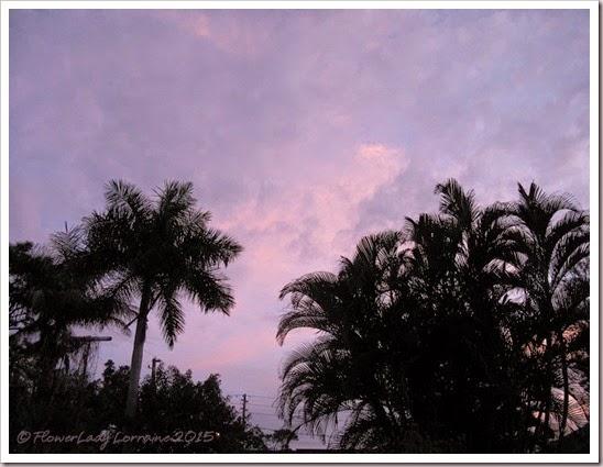 12-24-sunrise