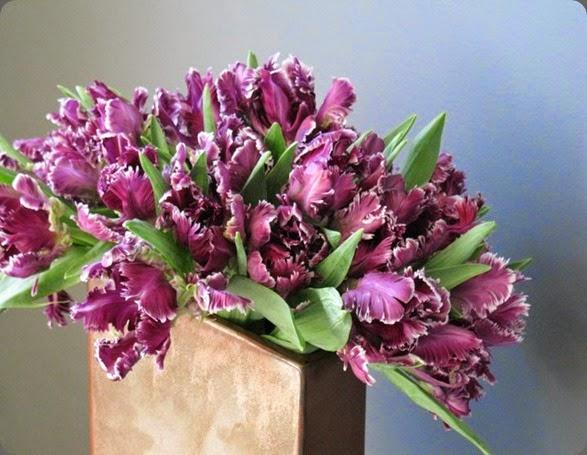 tulips epoch floral  198723_10150116649962010_1720786_n