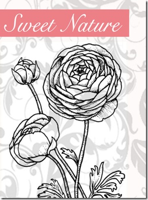 Sweet Nature Graphic