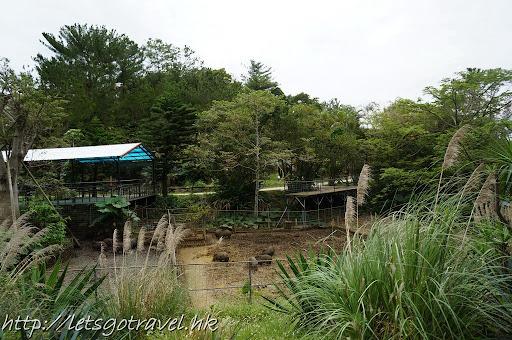 20111229okinawa231.JPG