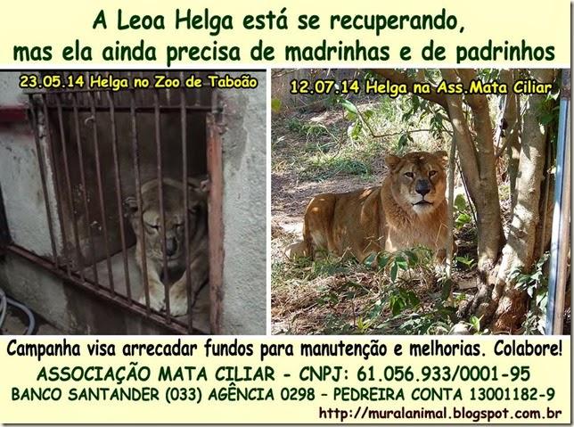 leoa-helga