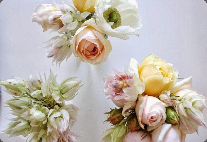 blushing bride IMG_8164 concrete and honey