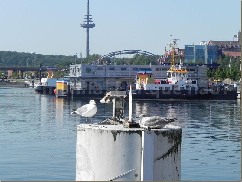 Kiel 4