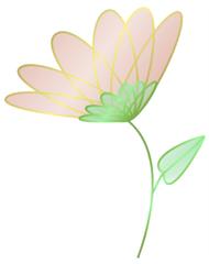 flower-sample-white