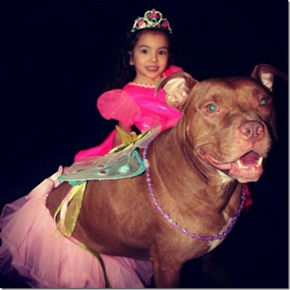 dogs-kids-best-friend-19