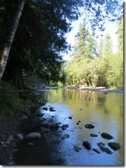 lewis river falls 18