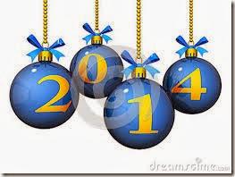 2014 año nuevo (12)