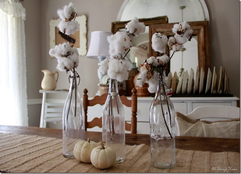 cotton 7