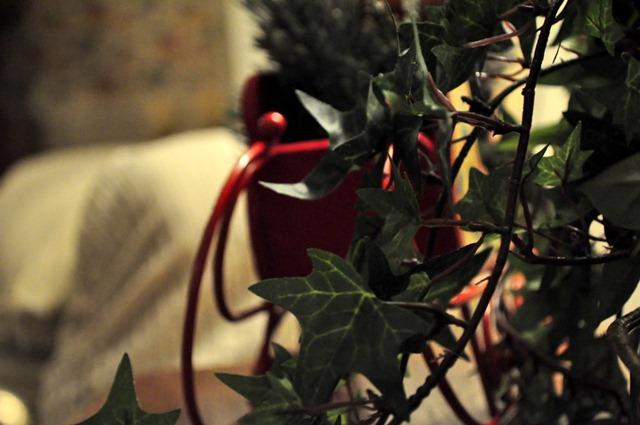 [christmas-in-charlotte-1793.jpg]