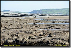 Roadtrip to Wales - Borth